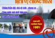 dich-vu-chong-tham-nha-tai-quan-10